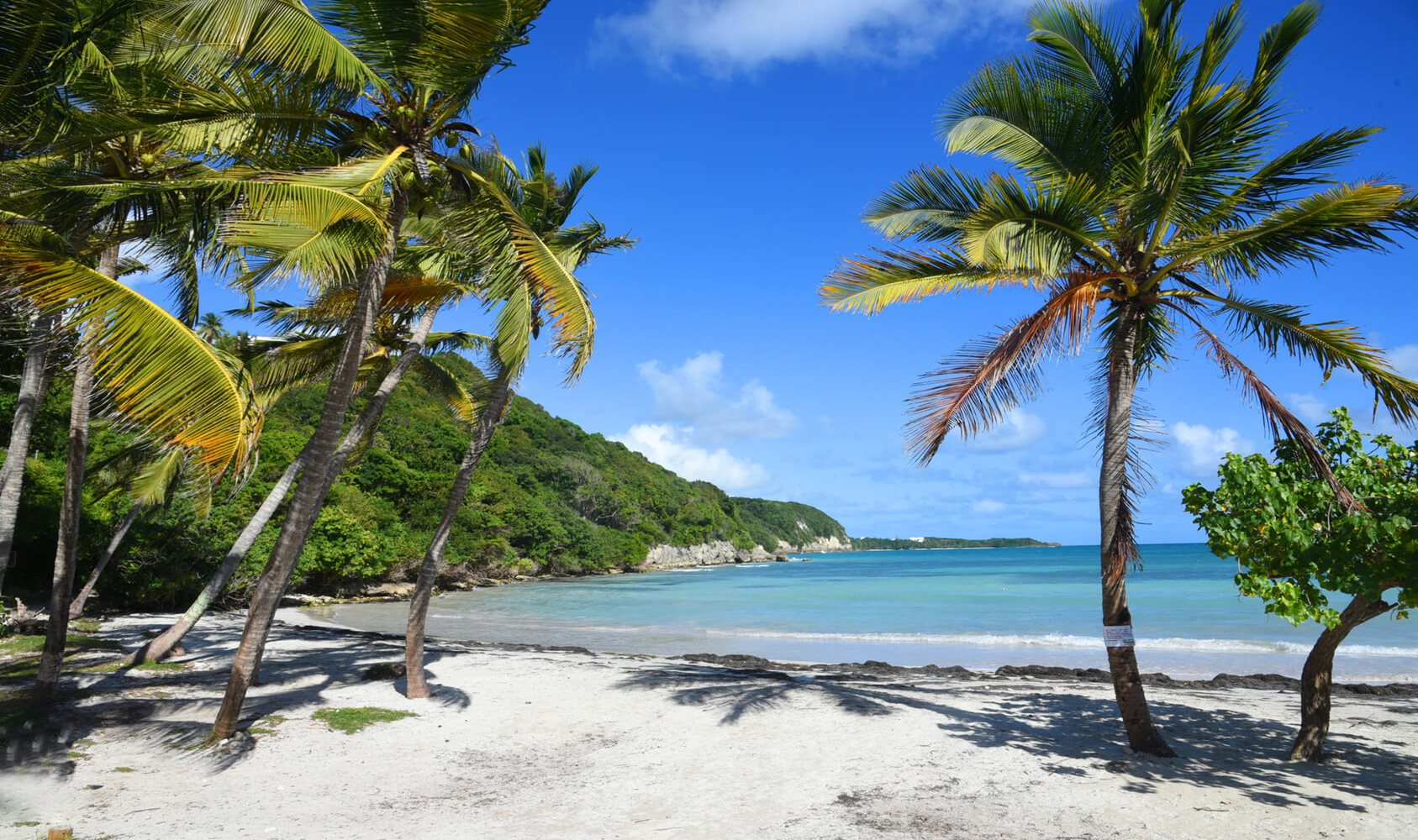 Guadeloupe / Point-a-Pitre