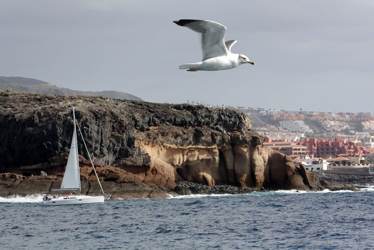 Canary Islands - Challenges and highlights of sailing the Atlantic