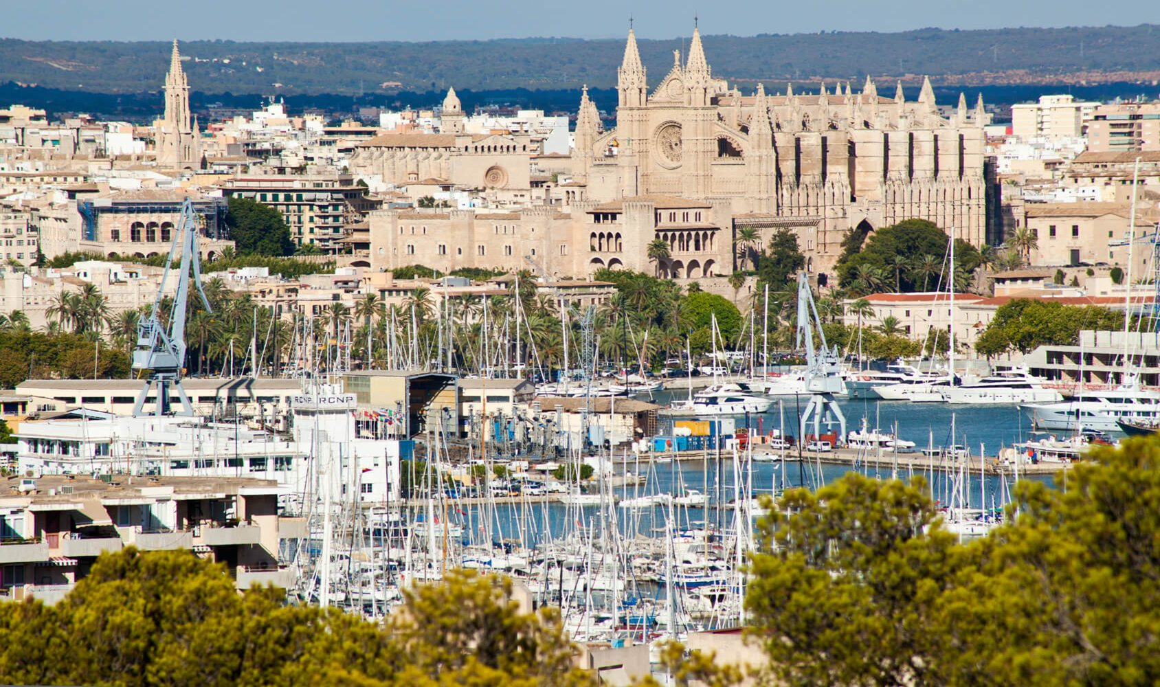 Palma de Mallorca - One of the most liveable cities in Europe